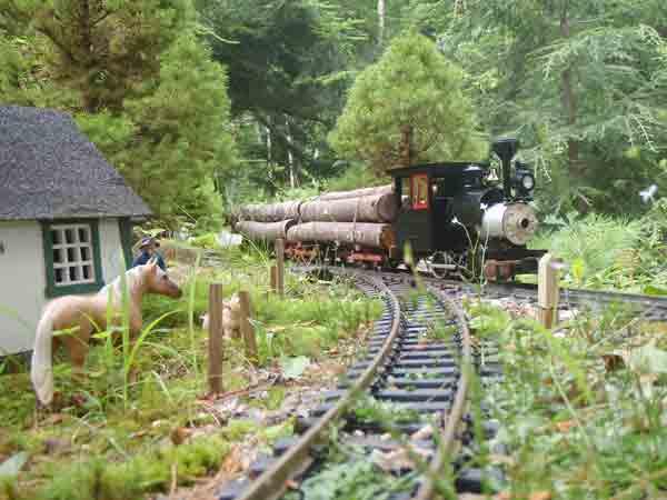 1:20.3 scale steam engine pulling a log train