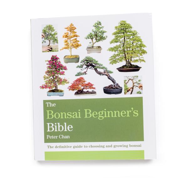 bonsai_book1