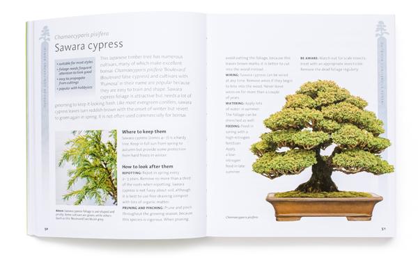 bonsai_book2
