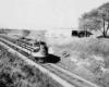 a diesel passenger train by a field
