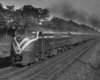 A black and white photo of a training moving down the tracks next to trees