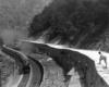a person on a ridge watches a steam passenger train below