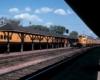 An orange train turning into a train station