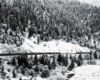 a photo of a passenger train making its way past a snowy forest