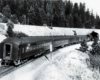 a passenger train entering a tunnel by a snowy forest