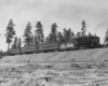 a steam engine with passenger cars rolling past a patch of trees