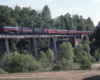 A train passing over a bridge surrounded by trees