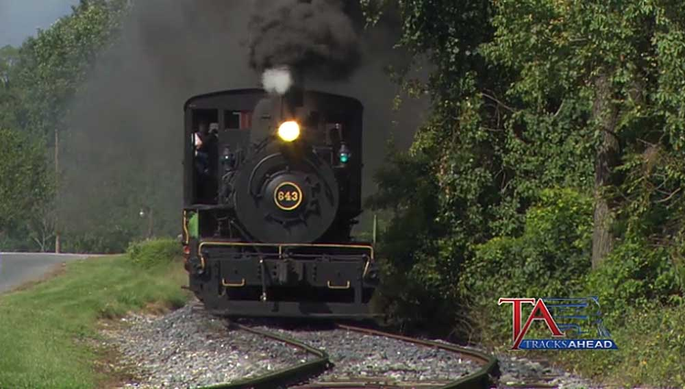 Steam locomotive approaching along tree line