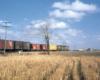 A distant shot of a train passing through farmland