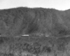 A far away black and white picture of Train 37 moving through the mountains