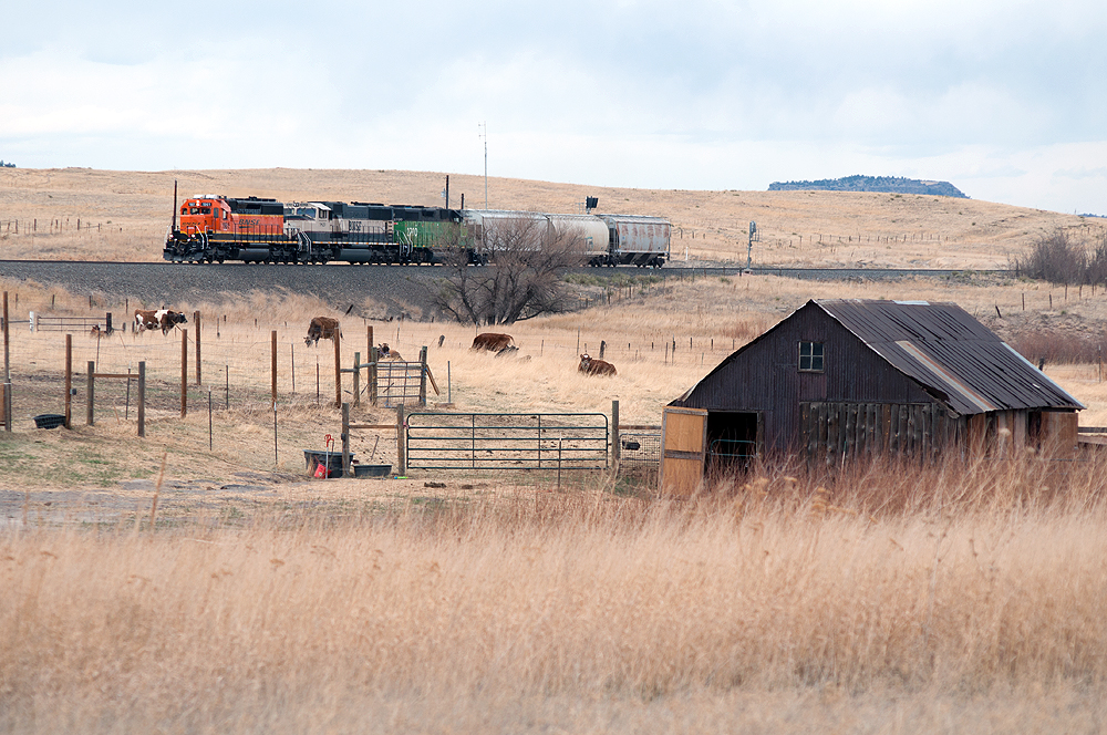 An unusual, short, BNSF Railway train heads south on the Joint Line between Denver and Pueblo, Colo.