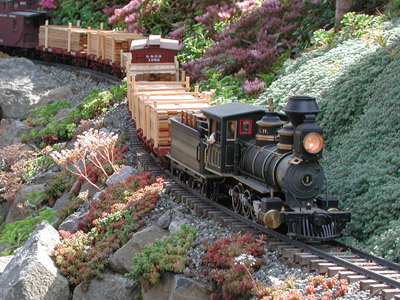Model Black Train hauling wood