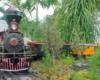 Eric Mueller's garden railroad in Hawaii