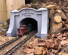 Richard Weatherby quarantine tunnel portal