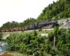 An HO Scale steam locomotive hauls uniform coal hoppers upgrade in a green mountain scene.