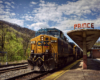 """A yellow-and-blue locomotive leads a freight train beside a passenger platform bearing the word """"Prince""""."""