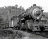 Articulated steam locomotive with freight train
