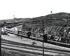 Three CN locomotives take the lead of a passenger train in a rail yard.