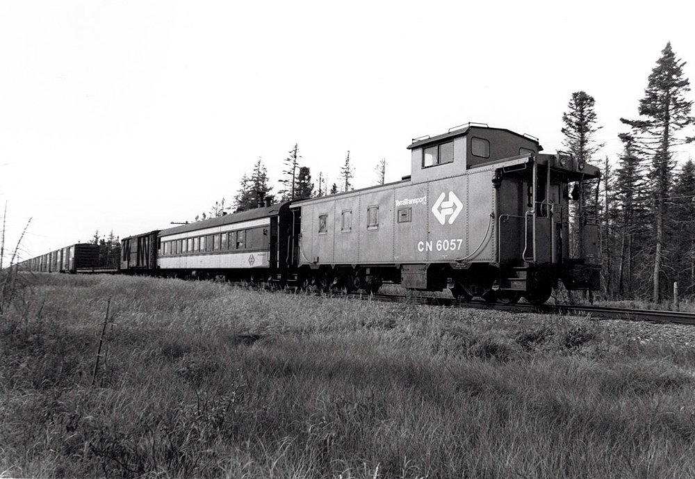 A mixed freight train ending with a caboose in a sparse forested area.