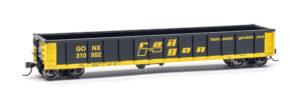 Railgon gondola car