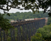 Locomotives hauling mixed freight train over a trestle surrounded by forest.