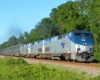 A long Amtrak passenger train moving through a tree-lined background.