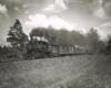 Steam locomotive on freight train