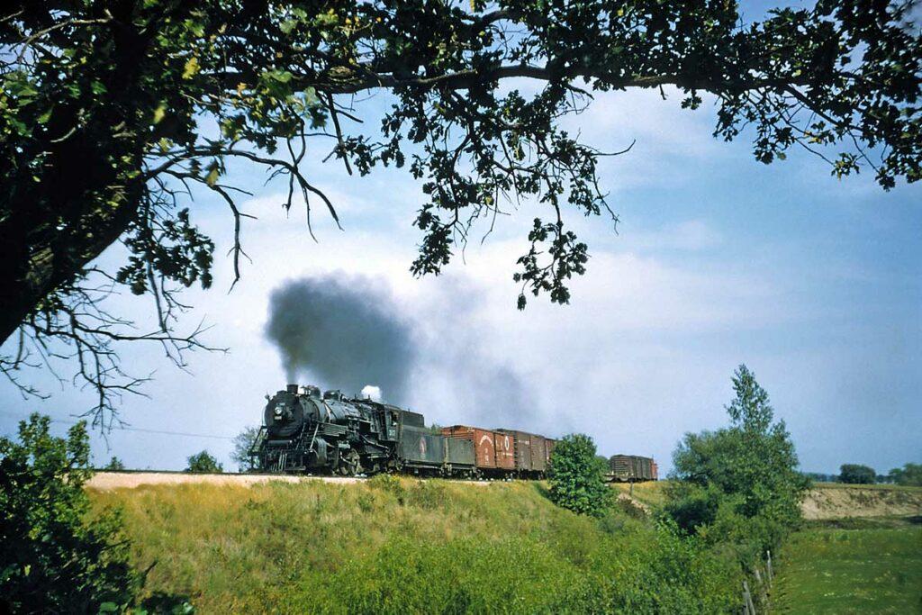 Smoking steam locomotive with freight train framed under tree