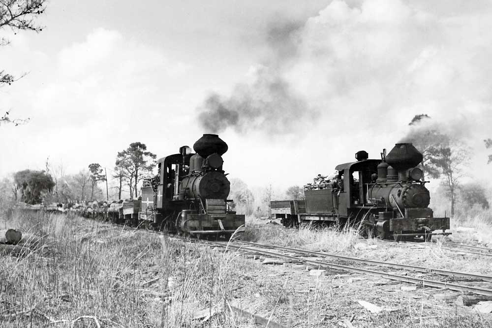 Two small narrow gauge steam locomotives in a field