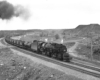 Articulated steam locomotives with freight train