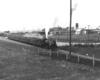 Steam locomotive with passenger train at station.
