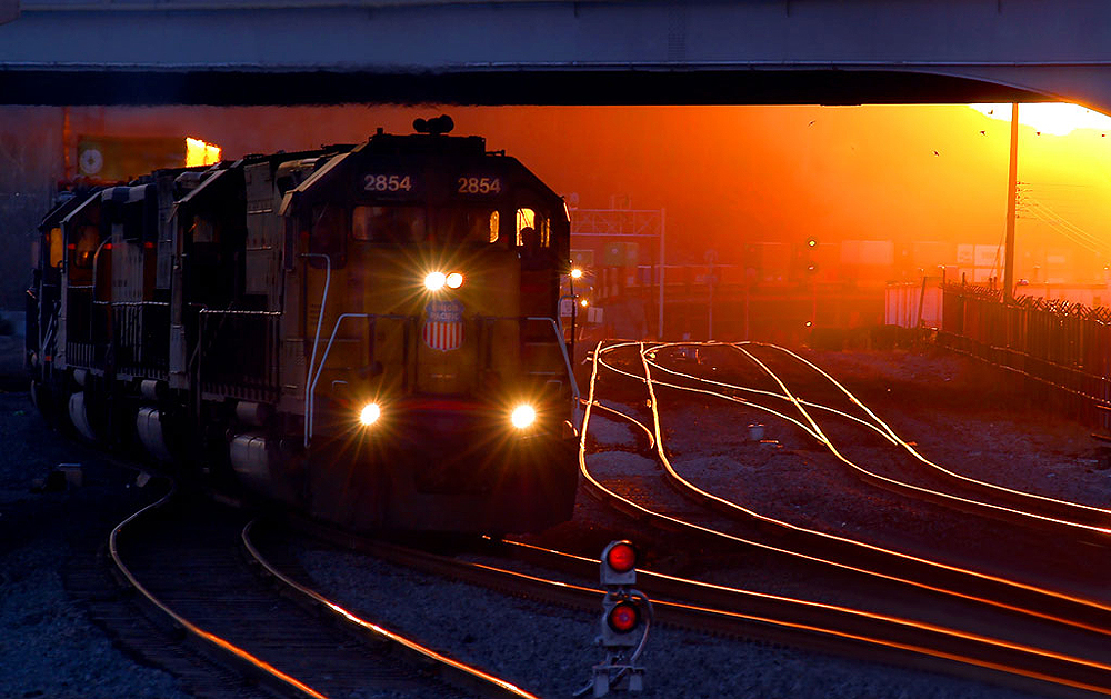 Locomotive hauls a train on yard tracks under a bridge backlit by low angle sunlight.
