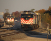 Two commuter trains with bilevel gallery cars meet in late afternoon sunlight.