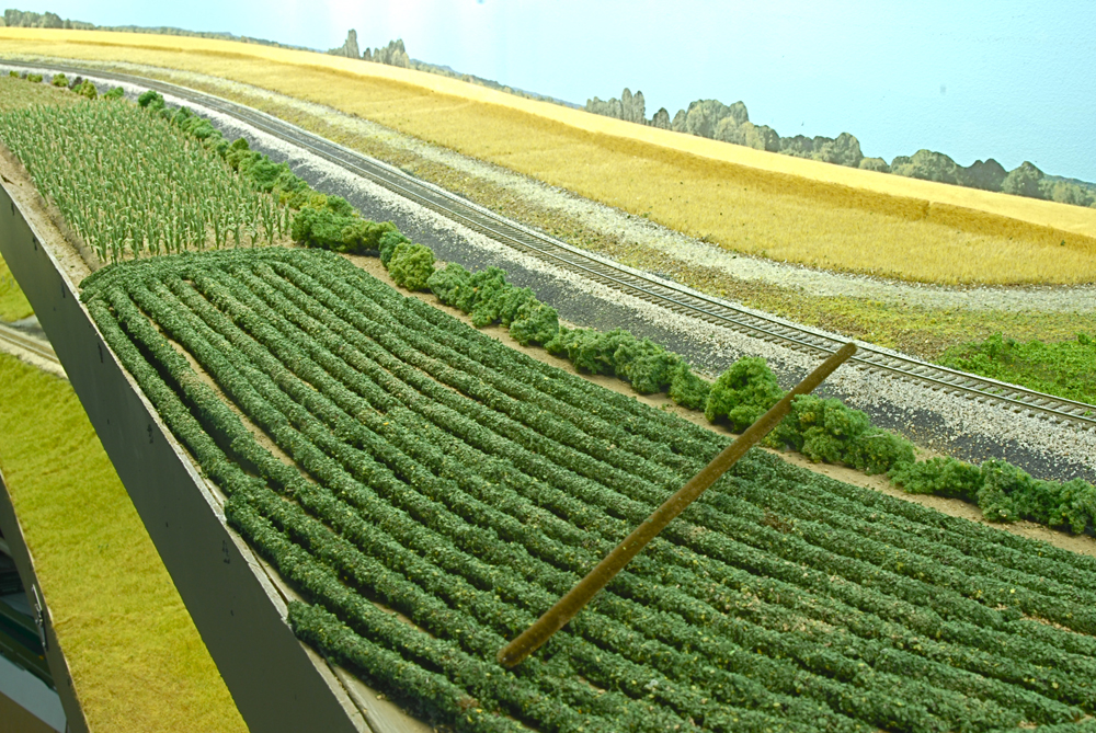 Rows of crops on a model railroad