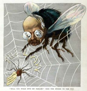 Cartoon of a fly and a spider with its web