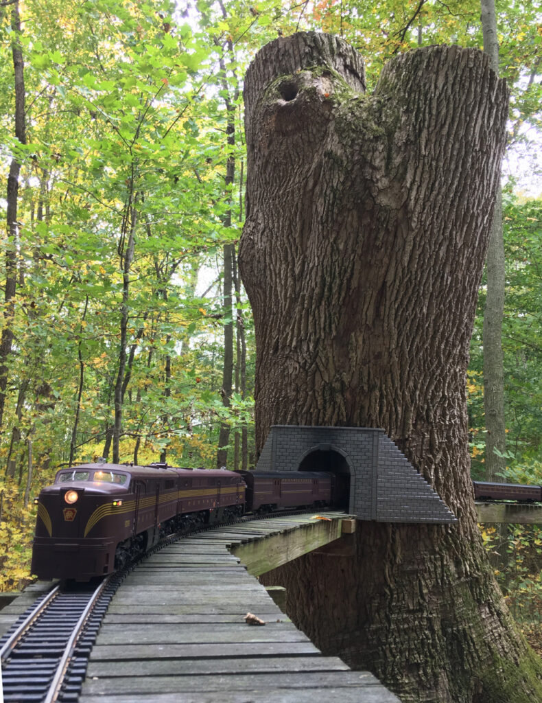 Tunnel through tree with locomotive on track