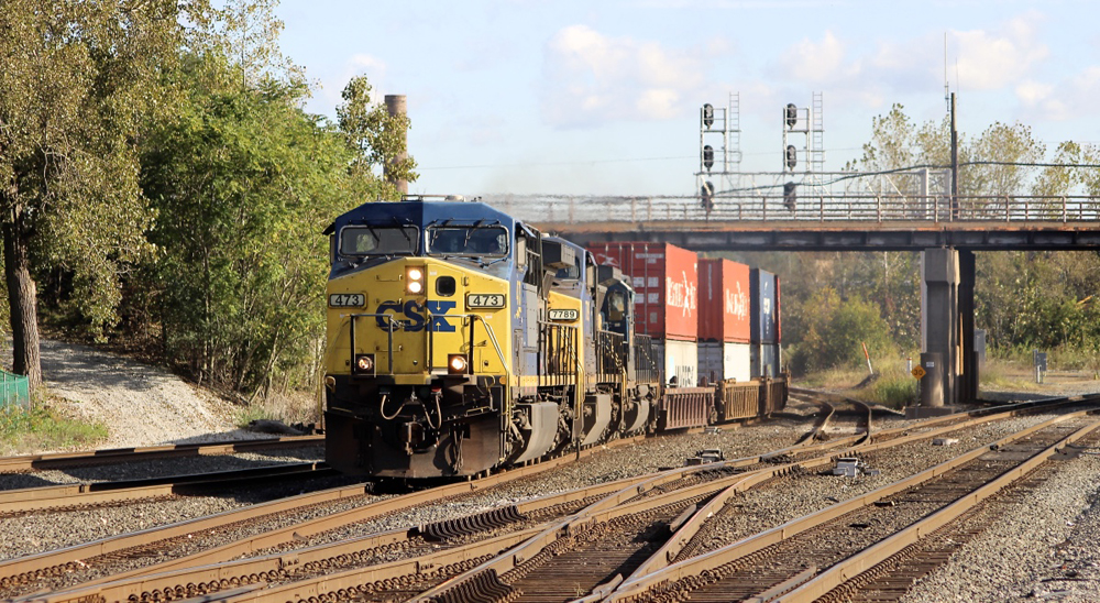 Intermodal train with blue and yellow locomotives
