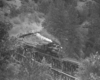 Black-and-white overhead view of Shay steam locomotive crossing trestle with log train