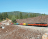 Long model train on a garden railway