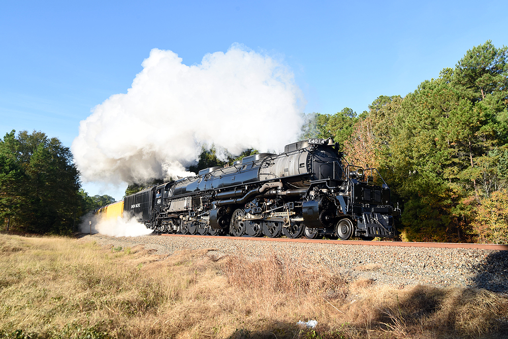 Steam locomotive generating clouds of steam on curve among trees