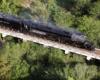 Big Boy steam locomotive on a bridge over trees and vegetation.