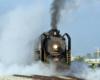 Steam locomotive shrouded by steam.