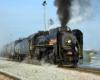 Steam locomotive hauling long freight train.