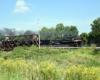 Steam locomotive hauling freight train over steel truss bridge.