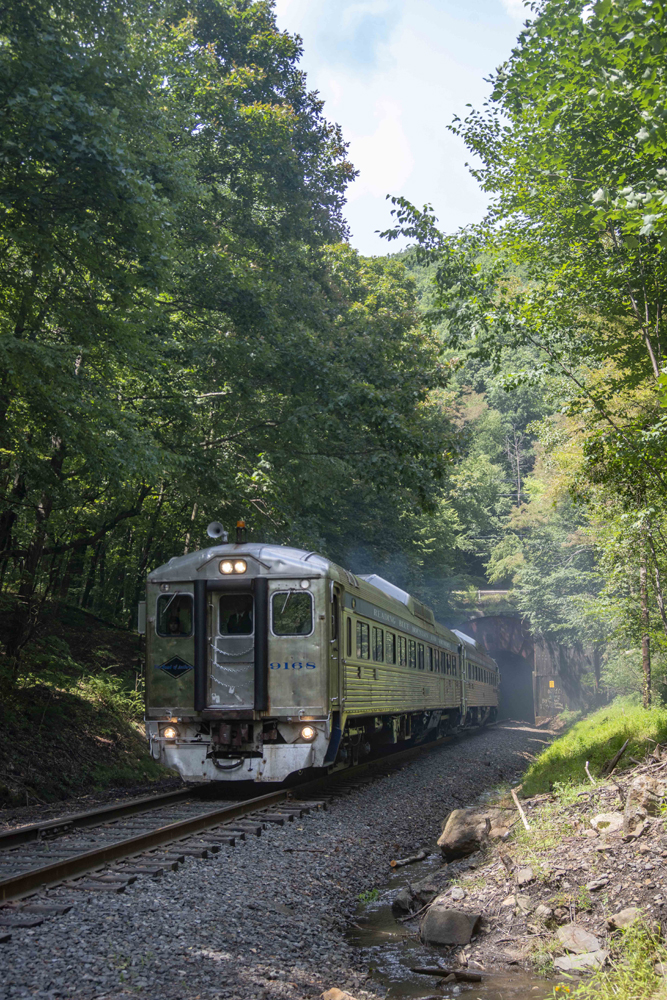 Railcars at tunnel, surrounded by trees