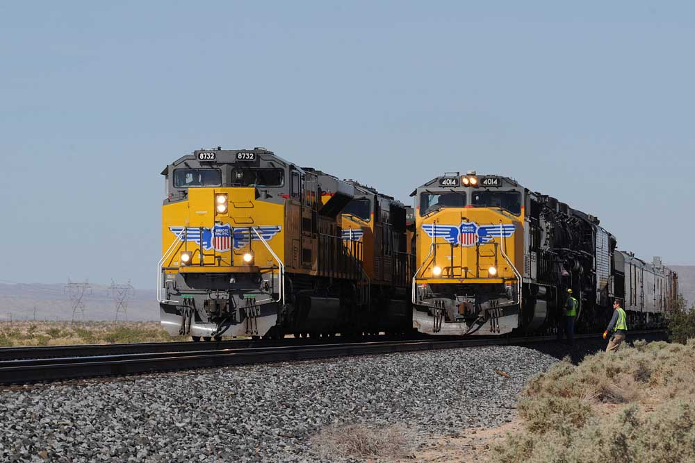 Yellow diesel locomotives line up side by side