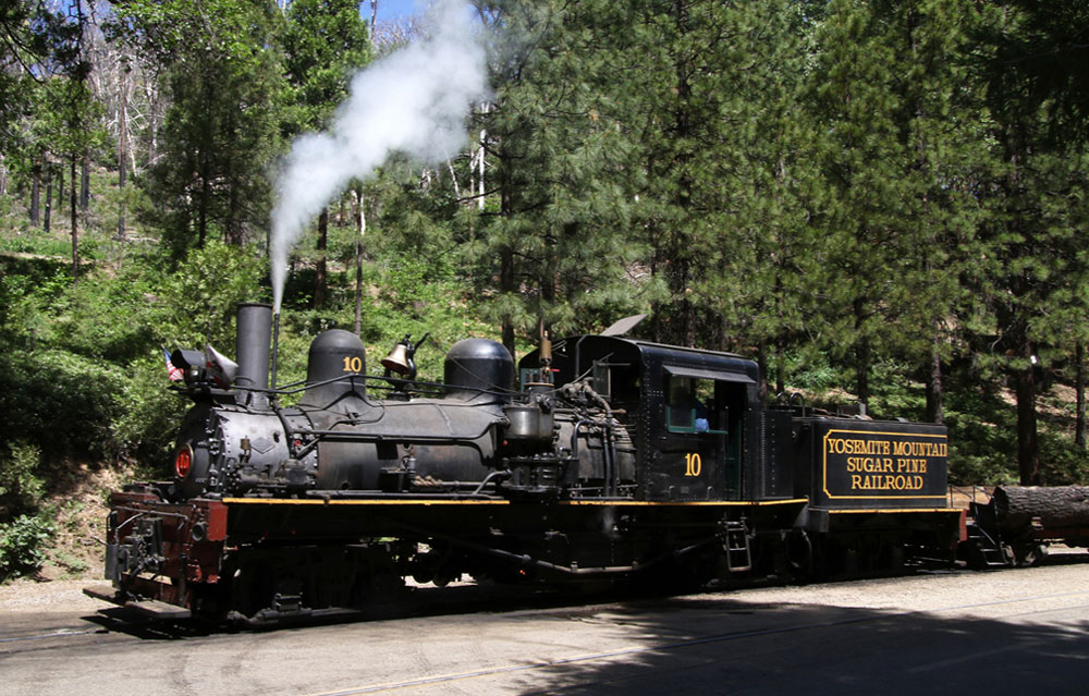 Side view of small steam locomotive waiting on tracks