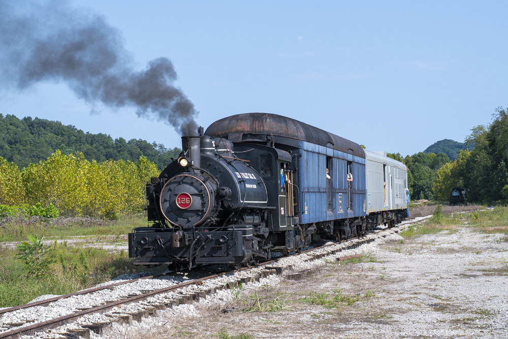 Small steam locomotive pulling two cars