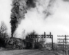 Black-and-white photo of steam locomotive with Reading Company freight train