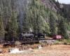 Narrow gauge steam train crossing a bridge in a forested scene.